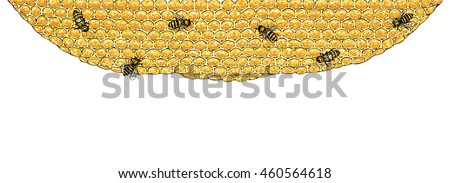 Bees and honeycombs : Vector