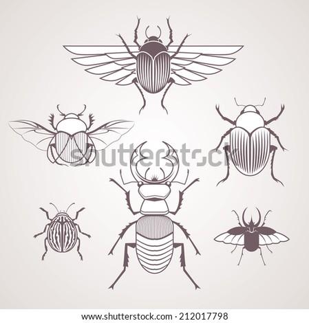 Beetles - stock vector