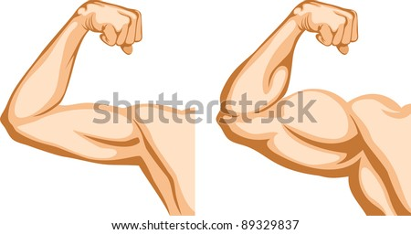 Before and After. Two hands shows progress after fitness. - stock vector