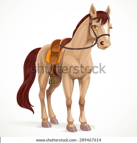Beige horse saddled and in harness isolated on a white background - stock vector