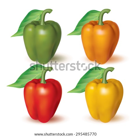 Bell peppers. Photo realistic set of different color. Vector illustration. - stock vector