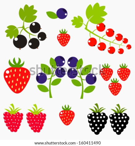 Berry fruits collection - blueberries, strawberries, black currant. Vector illustration - stock vector