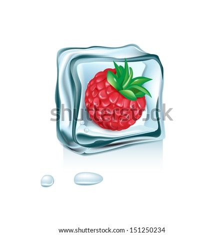 berry in ice cube melting isolated