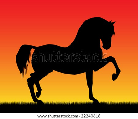 Best of the paces of horses, so beautiful and hardy, over wonderful sunrise. - stock vector