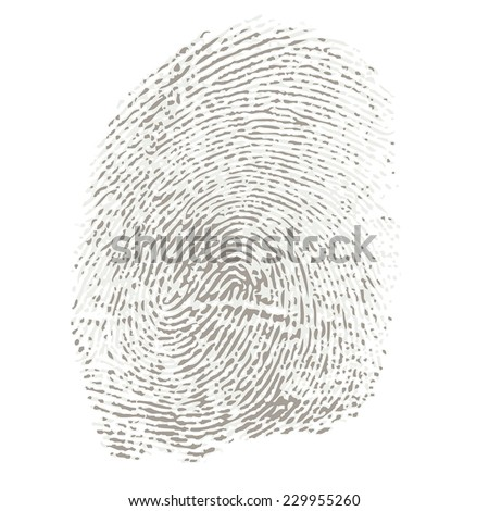 Bicolored Fingerprint of a Thumb - stock vector
