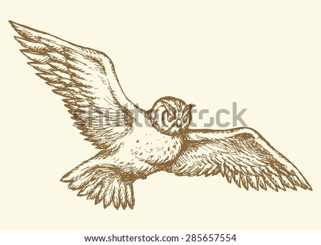 Big beige floating in air night owl with long fluffy glide plume. Vector monochrome freehand cartoon ink drawn backdrop sketchy in art scribble ancient style pen on paper with space for text on sky - stock vector