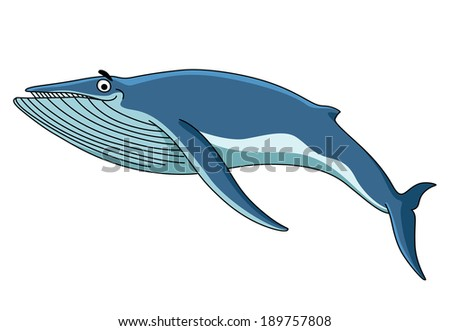 Big blue baleen whale swimming through the sea, cartoon illustration isolated on white - stock vector