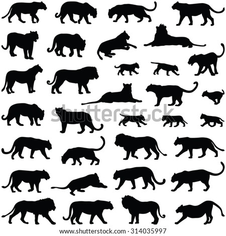 Big cats collection - vector silhouette