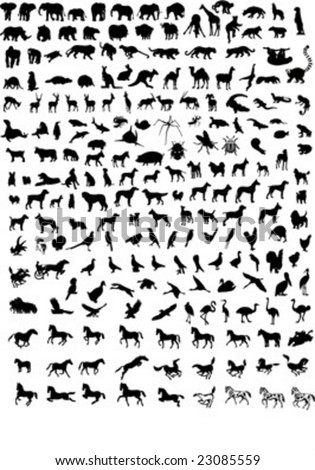 Big collection of different animals  vector silhouettes - stock vector