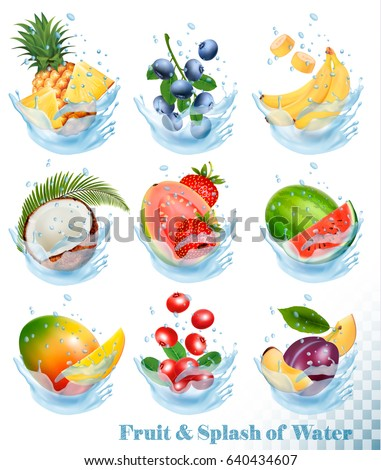 Big collection of fruit in a water splash. Pineapple, mango, banana, pear, watermelon, blueberry, guava, strawberry, coconut, grawberry, raspberry. Vector Set