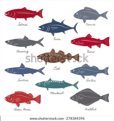 Big Collection Marketable Fish Symbols Vector Stock Vector 278384396