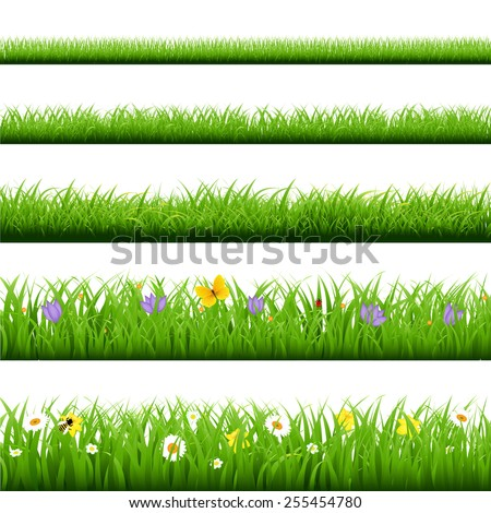 Big Grass Set With Butterfly And Flowers With Gradient Mesh, Vector Illustration - stock vector