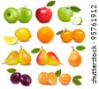 Big group of different fresh fruit. Vector. - stock photo
