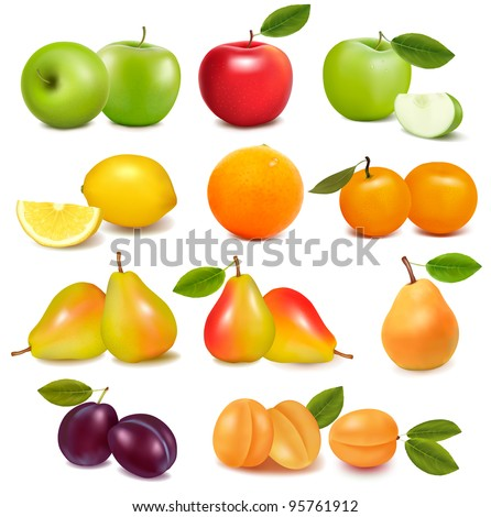 Big group of different fresh fruit. Vector. - stock vector