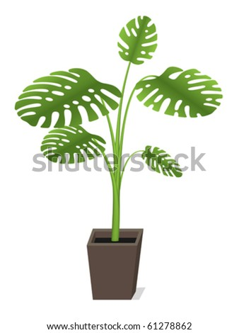 office plant stock photos images pictures shutterstock
