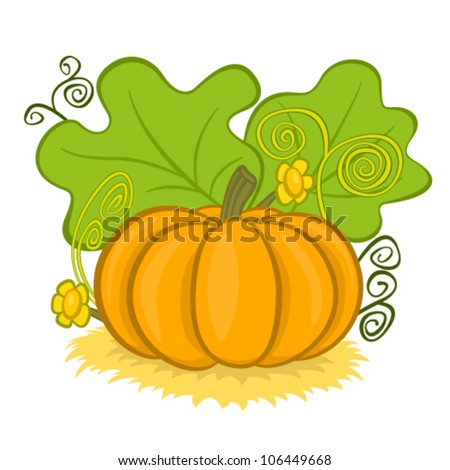 Big pumpkins on hay, with green leaves and curls, vector illustration cartoon - stock vector