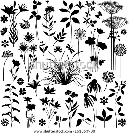 Big set of plants and flowers - stock vector