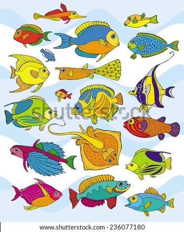 Big Set Realistic Fish Color - stock vector