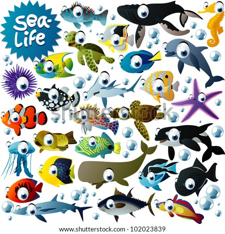 big vector sea-life animals set