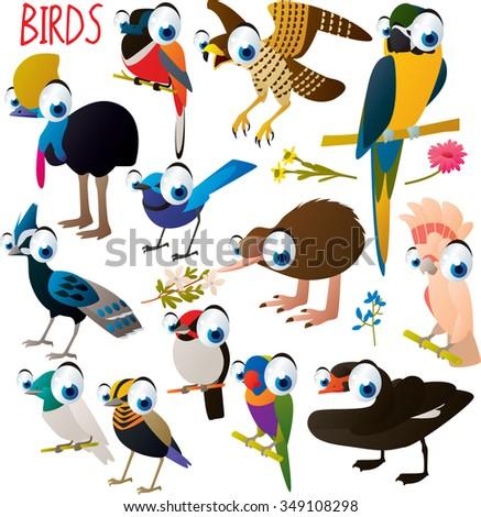 big vector set of funny comic cartoon animals: birds: cockatoo, macaw, parrot, kiwi, swan, pheasant, cassowary, falcon and others - stock vector