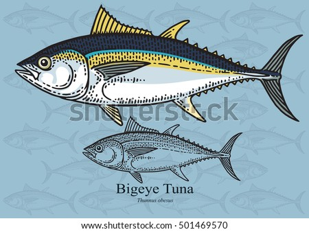 commercial tuna fishing stock images royalty free images vectors shutterstock. Black Bedroom Furniture Sets. Home Design Ideas