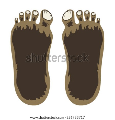 Bigfoot Feet