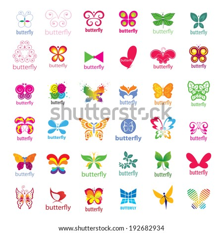 biggest collection of vector icons butterflies  - stock vector