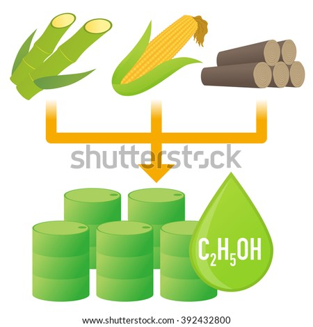 Biofuel Biomass Ethanol Made Form Sugar Stock Vector 392432800