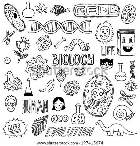 Biology doodles. Hand drawn. Vector illustration. - stock vector