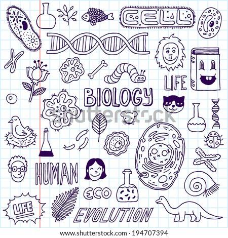Biology. Hand drawn. Vector illustration. School notebook. - stock vector
