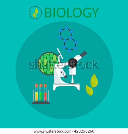 Biology research vector workspace and science equipment school concept. - stock vector