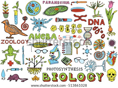 Biology Science Doodle Hand Drawn Elements. Science and School Education theme.