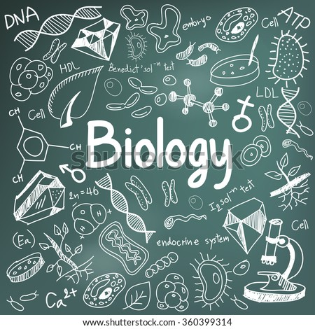 Biology science theory doodle handwriting and tool model icon in blackboard background used for school education and document decoration, create by vector - stock vector