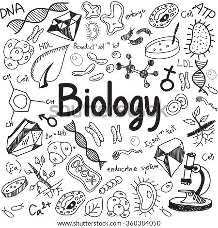 Biology science theory doodle handwriting and tool model icon in white isolated paper background used for school education and document decoration, create by vector