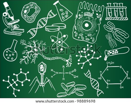 Biology sketches on school board. Vector illustration. - stock vector