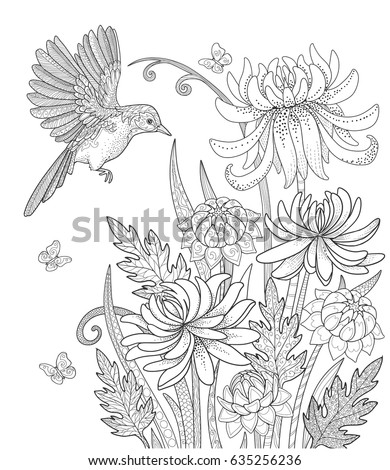 Bird Flowers Butterfly Garden Page Adult Stock Vector