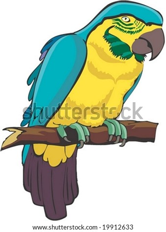 Bird Character - isolated on white background : vector illustration - stock vector