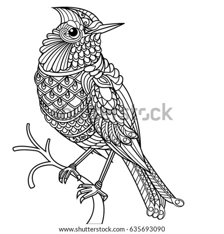 Bird coloring book for adults