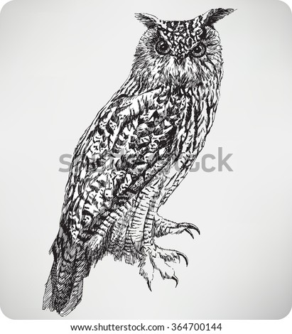 Bird Eagle Owl, hand drawing, vector illustration. - stock vector