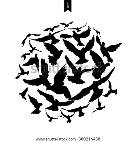 Bird flying silhouette  - stock vector