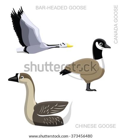 Bird Goose Set Cartoon Vector Illustration - stock vector