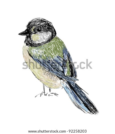 Bird Hand drawn - stock vector