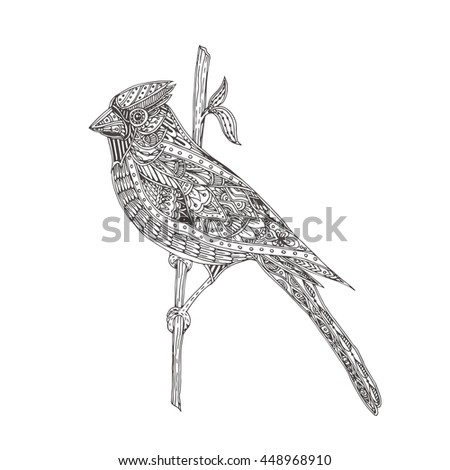 Hand Drawn Bird Cardinal With Ethnic Doodle Pattern Coloring Page