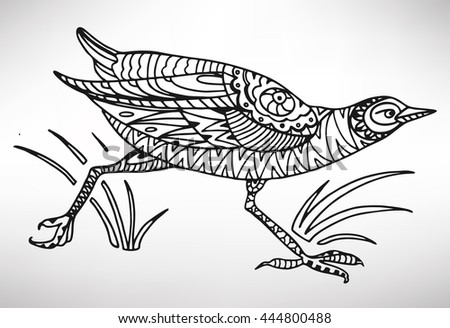 Bird. Hand-drawn with ethnic pattern. Coloring page - isolated on a white background. Zendoodle patterns. Vector illustration.