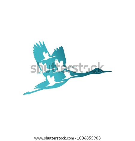 bird logo, vector logo template