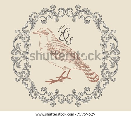 bird print with very cool classic frame - stock vector