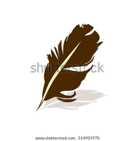 bird's feather. Vector