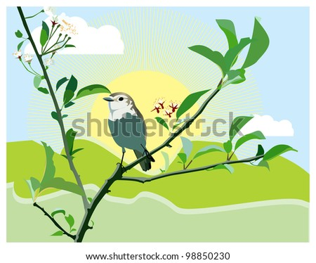 birdie on a blossoming branch - stock vector