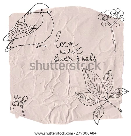 Birds and berries painted on paper. Sketch on paper. A crumpled sheet of paper, kraft paper. Background vector