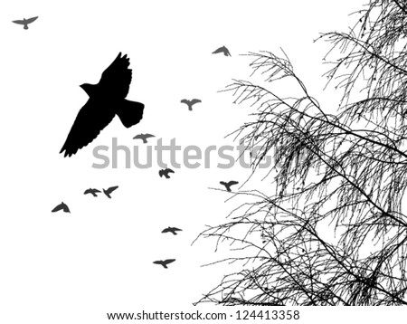 birds fly from tree - stock vector